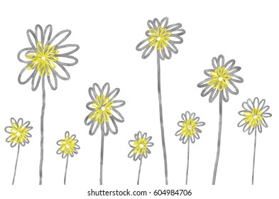 Hand drawn abstract camomiles on the white background. Isolated illustration of flowers painted by oil color, high quality