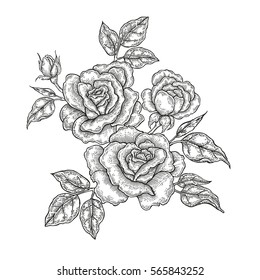 Hand drawn flowers. Vintage floral composition, rose flowers and leaves isolated on white background. Illustration in engraved style
