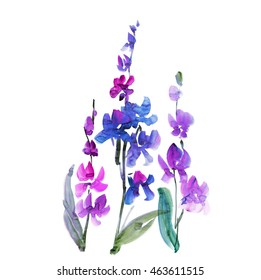 hand drawn orchid flower. sketch floral watercolor illustration. isolated violet wild flowering element.