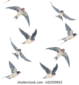 hand drawn painted seamless pattern of watercolor sketch of isolated swallow birds on white background