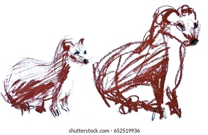 Hand drawn vector illustration of a weasel. Isolated on white. Brown animals on white background. Pencils sketchy drawing
