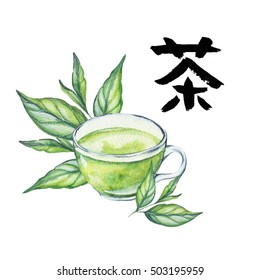 Hand drawn watercolor green tea cup with leaves illustration.