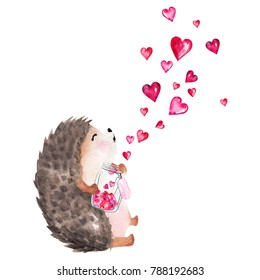 Hand drawn watercolor hedgehog holding glass jar with hearts