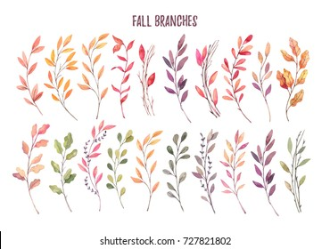 Hand drawn watercolor illustrations. Autumn Botanical clipart. Set of fall leaves, herbs and branches. Floral Design elements. Perfect for invitations, greeting cards, blogs, posters, prints