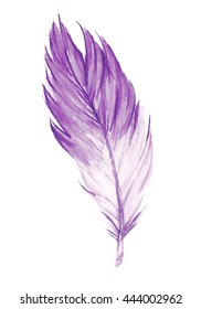 Hand drawn watercolor purple feather. Purple watercolor feather. Boho feather style. Raster illustration.