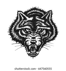 Hand drawn wolf face on white background