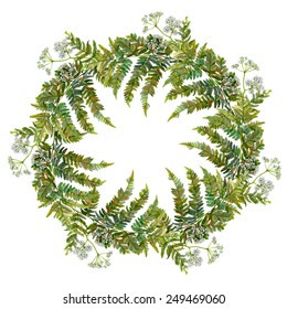 Hand drawn wreath with fern and wild aegopodium white flowers and leaves. Watercolor design element