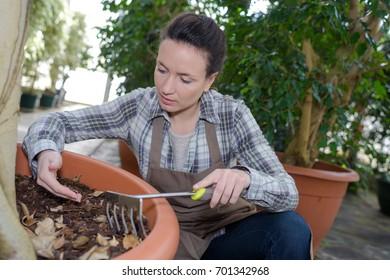 hand gardener and his tool - rake