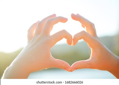 The hand of a girl or girl represents the heart symbol. Summer, nature and sunshine.