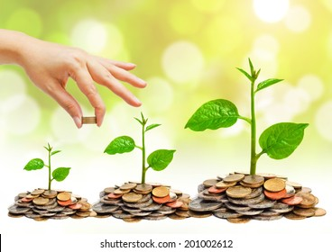 hand giving a golden coin to a tree growing on piles of golden coins - saving money