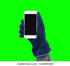 hand with glove holding a smart phone  in winter and isolated cutout on green background with chroma key