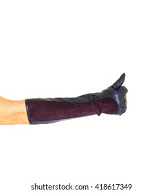 hand in glove isolated on white background