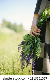 A hand with a gold ring holding a bunch of wild field purple flowers on a sunny day with copy space for the text