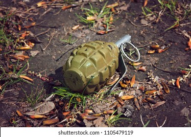 hand grenade grenade lying on the ground.