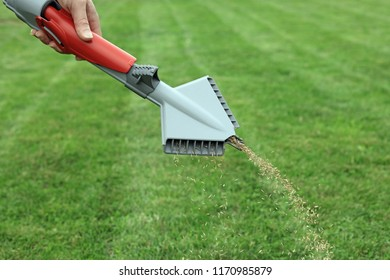 Hand Held Grass Seed Spreader Sowing Seeds For A Perfect Healthy Lawn.
