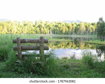Hand hewn bench at the beaver pond