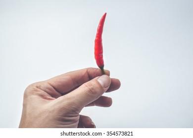 Hand hold Chili pepper