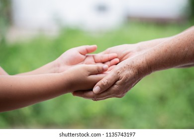 hand hold mom Concept Love the giver Of mothers with children On blurred background nature