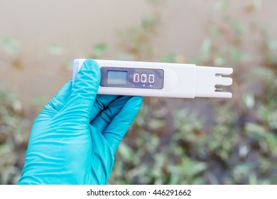 hand hold water quality tester and take sampling water for analysis