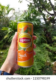 Hand holding aluminium can of Lipton ice tea with peach on green plants background, July, 2018, Chiang mai, Thailand