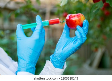 Hand holding apple fruit with syringe with chemical fertilizers of red colour in apple. GMO and pesticide modification. Scientist in gloves injecting apple with red fertilizer