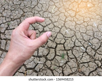 hand holding with arid background