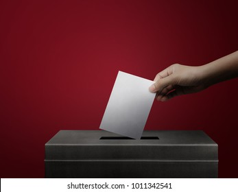 Hand holding ballot paper for election vote concept at red background.