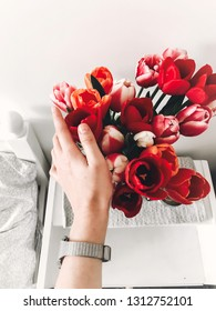 Hand holding beautiful red and pink tulips bouquet in vase on white wooden nightstand near stylish white bed, copy space. Hello spring concept. Happy mothers day