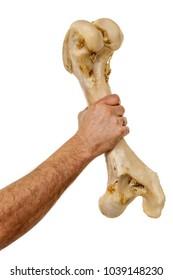 Hand holding big bone isolated over white background