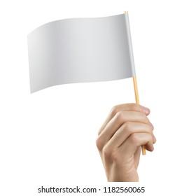 Hand holding blank flag, isolated on white background