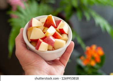 Hand holding bowl of chopped apples. Hand holding pot with chopped apples. Chopped apples with blurred plant in the background.