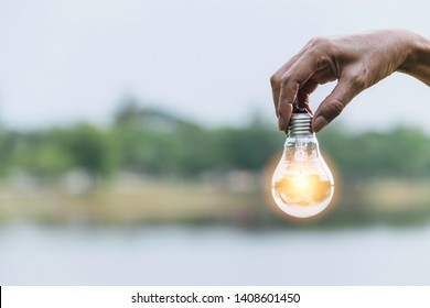 hand holding bulb in nature on green background.