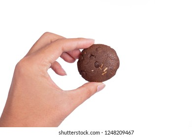 Hand holding chocolate Cookies isolated on white background.