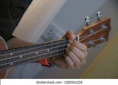 The hand holding the chord guitar.
