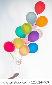 Hand holding colorful balloon bunch on white background.