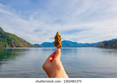 Hand holding dried cannabis flower against beautiful lake landscape, taken in Vancouver Island, canada