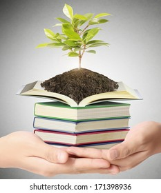 Hand holding the earth and Education