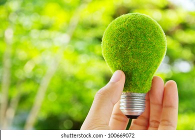 hand holding eco light bulb energy concept