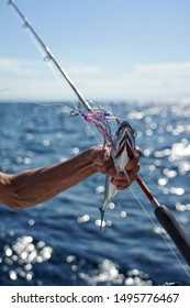 Hand holding fish on a boat with a hook in the mouth. Fishing with sunny weather on the ocean in Indonesia, blue sky and fishing rod can be seen too.