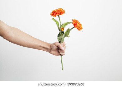 Hand holding a flower tightly