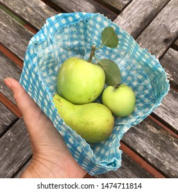 Hand holding a folded waxed cloth wrap with home grown fruit