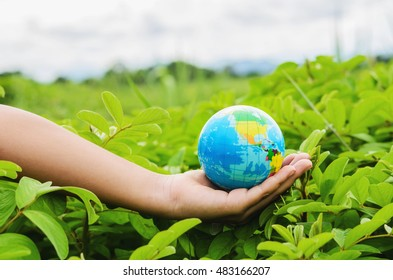 Hand holding globe on green grass in nature