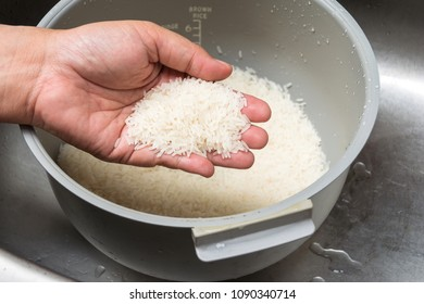 hand holding the grains of rice on the rice cooker