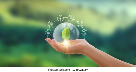 Hand holding green leaf with icons energy sources for renewable, sustainable development. Ecology concept. - Shutterstock ID 1938021169