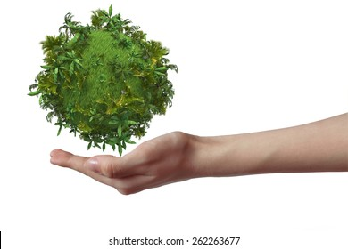 Hand holding green planet with tropical trees isolated on white background