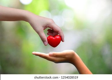 hand holding heart putting in one hand for concept health care and donate