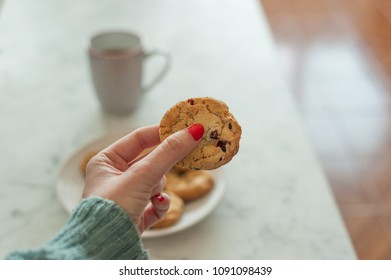 Hand holding homemade cookie
