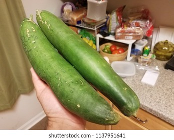 hand holding large green cucumbers in the kitchen