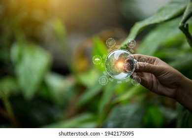 hand holding light bulb against nature, icons energy sources for renewable, - Shutterstock ID 1942175095
