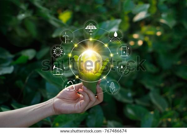 Рука держит лампочку против природы на зеленом листе с иконами источников энергии для возобновляемых, устойчивого развития. Экологическая концепция. Элементы этого изображения, оформленные НАСА.